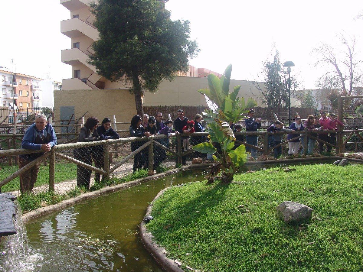 El Ayuntamiento recupera el servicio de veterinario para el Zoo