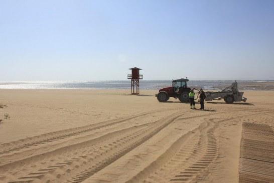 Se acometen tareas de regeneración en la playa de Isla Canela