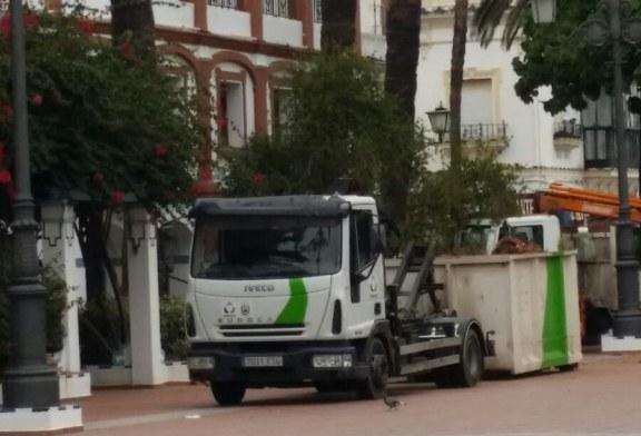 El PSOE de Ayamonte considera que el Concejal miente en relación al estado de las palmeras