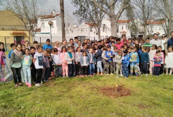MIEMBROS DEL EQUIPO DE GOBIERNO PARTICIPAN EN LA PLANTACIÓN DE OLIVOS EN LOS COLEGIOS DE AYAMONTE