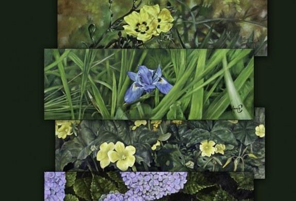 """Exposición """"Flora autóctona"""" de Anselmo Correa"""