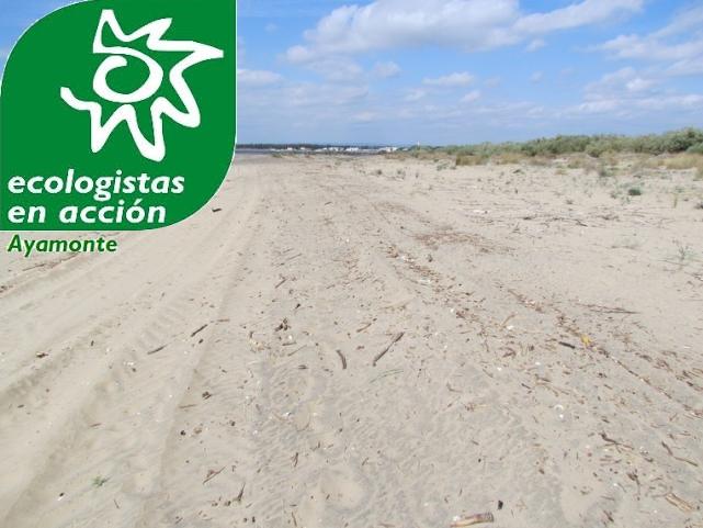 Ecologistas contra el cierre con espigones de la playa de Isla Canela
