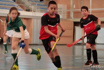 Interprovincial andaluz de Hockey Sala