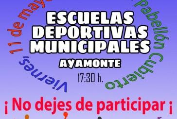 AYAMONTE PREPARA LA FIESTA DE CLAUSURA DE LAS ESCUELAS DEPORTIVAS MUNICIPALES 2017/18