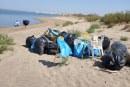 """40 sacos de basura recogidos este domingo en la zona de especial protección """"Isla de San Bruno"""", Isla Canela"""